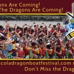 dragonboatfestival
